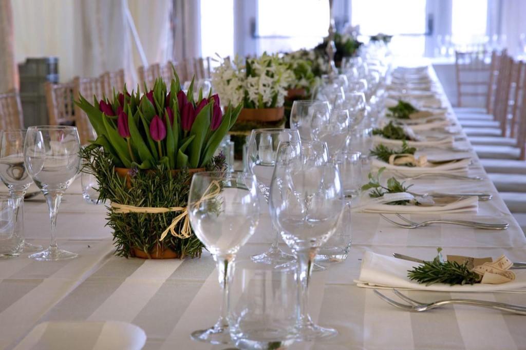 Tulipany Mocna Konkurencja R Na Weselu